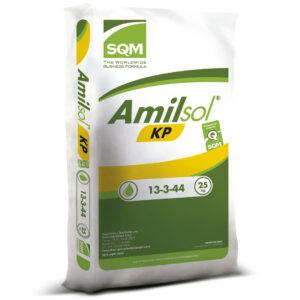 AMILSOL KP